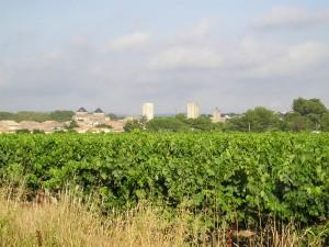 Commune de Pignan