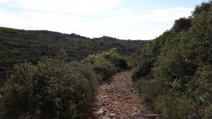 parcours_trail_montarnaud_mas_dieu
